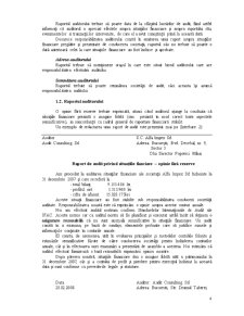 Concluzii de Audit și Raportarea - Pagina 5