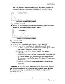 Silvicultura - Stratul Arborilor - Pagina 4