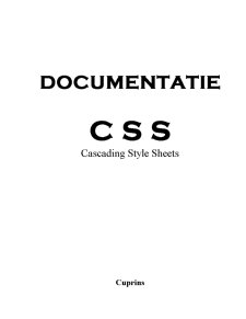 Tehnologii Web - Cascading Style Sheets - Pagina 1