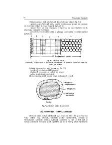 Tehnologia Zahărului - Pagina 2