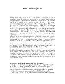 Prelucrarea Rumegusului - Pagina 1