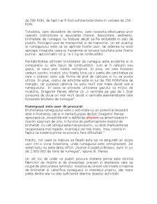 Prelucrarea Rumegusului - Pagina 2