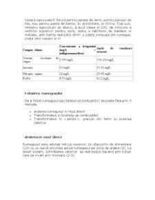 Prelucrarea Rumegusului - Pagina 5