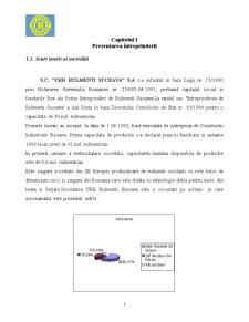 Proiect Practica in Contabilitate la SC URB Rulmenti Suceava SA - Pagina 3