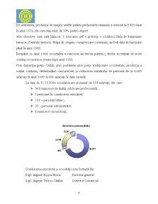 Proiect Practica in Contabilitate la SC URB Rulmenti Suceava SA - Pagina 4
