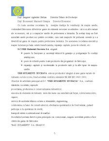 Proiect Practica in Contabilitate la SC URB Rulmenti Suceava SA - Pagina 5
