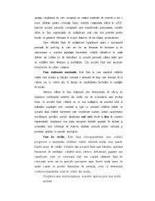 Cinetica Proceselor de Biosinteză - Pagina 4