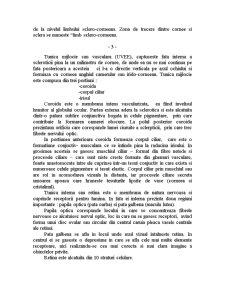 Glaucomul - Pagina 4