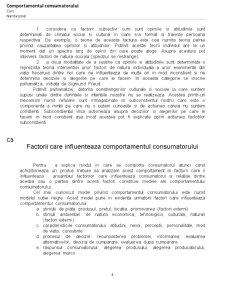 Comportamentul Consumatorului - Pagina 4