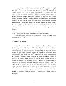 Biogazul - Energie prin Conversie Naturala - Pagina 3