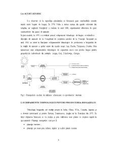 Biogazul - Energie prin Conversie Naturala - Pagina 5