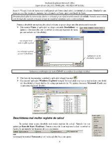 Calcul Tabelar - Microsoft Excel - Pagina 5