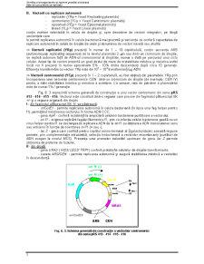 Ingineria Drojdiilor - Pagina 3