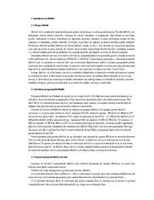 Lectii MatLab - Pagina 1