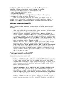 Auditul Aplicatiilor ERP - Pagina 3