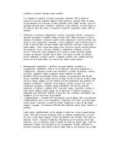 Auditul Aplicatiilor ERP - Pagina 5