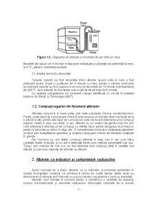 Biomonitorizarea Mediului cu Ajutorul Albinelor - Pagina 3