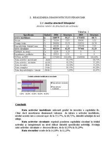 Diagnosticul Financiar la SC Omega SRL - Pagina 4