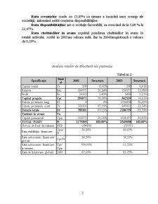Diagnosticul Financiar la SC Omega SRL - Pagina 5