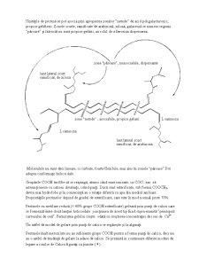 Hidrocoloizi - Pagina 5