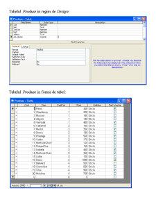 Crearea si Modificarea unei Baze de Date - Vinarie - Pagina 5