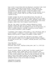 Gestiunea Riscului Bancar - Pagina 4