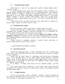 Geografie Rurala si Agroturism - Agroturismul in Judetul Suceava - Pagina 4