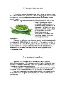 Materii Prime Vegetale - Mazarea - Pisum Sativum - Pagina 4