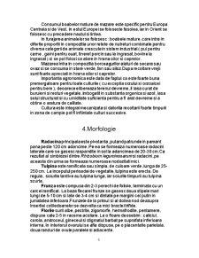Materii Prime Vegetale - Mazarea - Pisum Sativum - Pagina 5