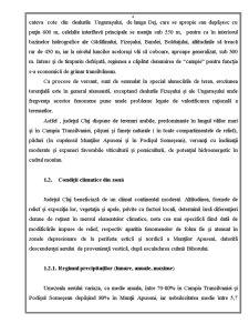 Proiect de An la Organizarea și Amenajarea Teritoriului Agricol - Pagina 5