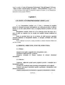 Întreprinderea Simulată - Pagina 5