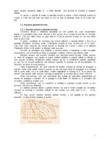 Geologie Inginereasca - Pagina 2
