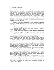 Dosar de Audit Curent - Pagina 4