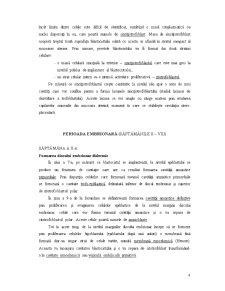 Embriologie - Pagina 4