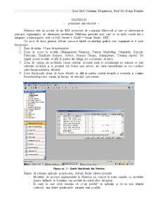 Suport Curs ERP - Navision - Pagina 1