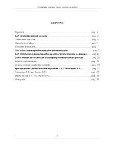 Contabilitatea Operațiilor privind Stocurile de Produse - Pagina 3
