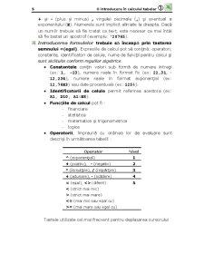 Microsoft Office Excel - O Introducere în Calculul Tabelar - Pagina 5