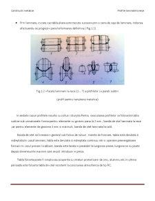 Profile Metalice Laminate la Rece - Pagina 2