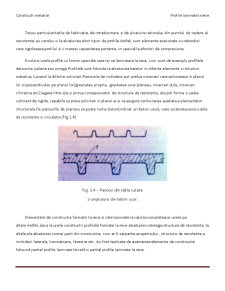 Profile Metalice Laminate la Rece - Pagina 4