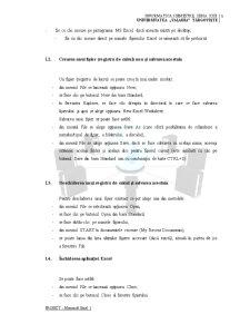 Pachete de Aplicatii pentru PC-uri - Proiect Excel - Pagina 5