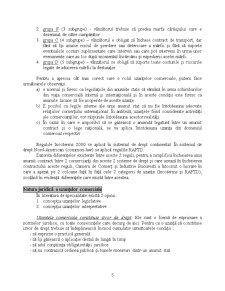 Drept Comercial Internațional - Pagina 5