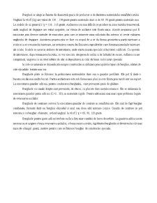 Gaurirea - Strunjirea - Rectificarea - Prelucrarea prin Aschiere - Rabotarea si Mortezarea - Pagina 3