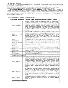 Organizarea și Funcționarea Sistemului Bancar - Pagina 2