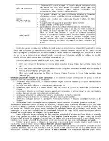 Organizarea și Funcționarea Sistemului Bancar - Pagina 3
