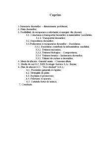 Procesarea Deseurilor ca Oportunitate de Afaceri - Pagina 2