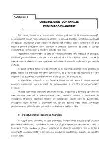 Analiza Economico - Financiara - Pagina 3