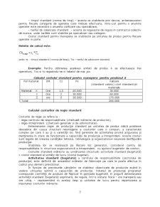 Contabilitate de Gestiune - Curs 8 - Pagina 3
