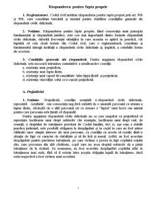Obligatii - Raspunderea pentru Fapta Proprie - Pagina 1