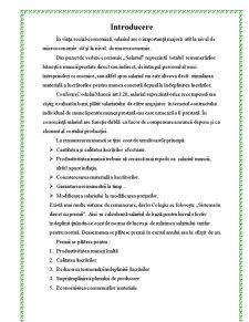 Salarizarea Lucratorilor in CAT - Pagina 1