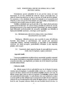 Falsificarea Carnii si a Produselor din Carne - Pagina 4